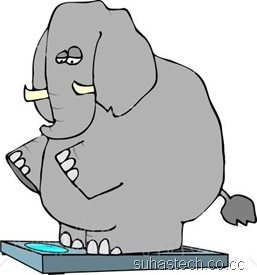 4551-Obese-Elephant-Standing-On-A-Weight-Scale-Clipart